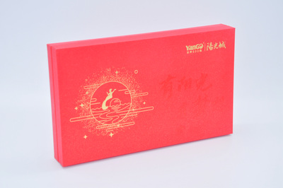 阳光城月饼包装