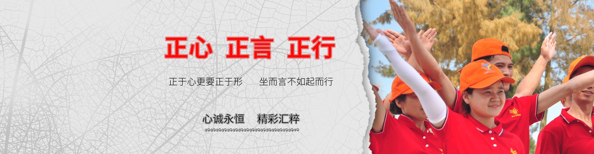 企业文化banner@凡科快图.png